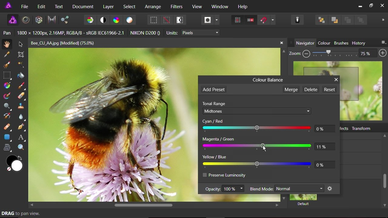 Affinity Photo Crack Free Download